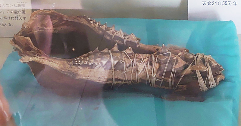 The Doragon bone in Hounji