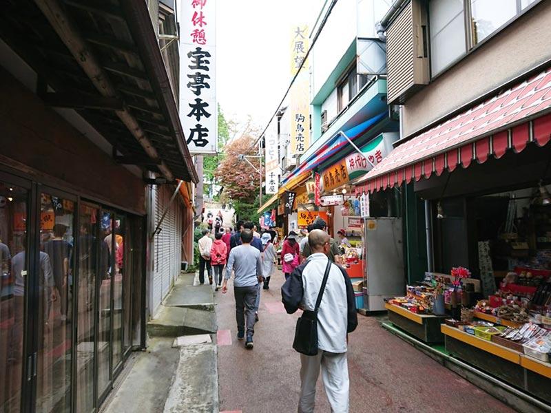 shop-street-in-musashimitake