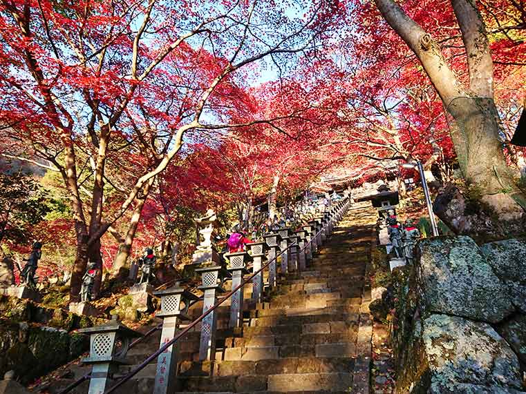 The stairs to Oyama Temple with Autumn leaves