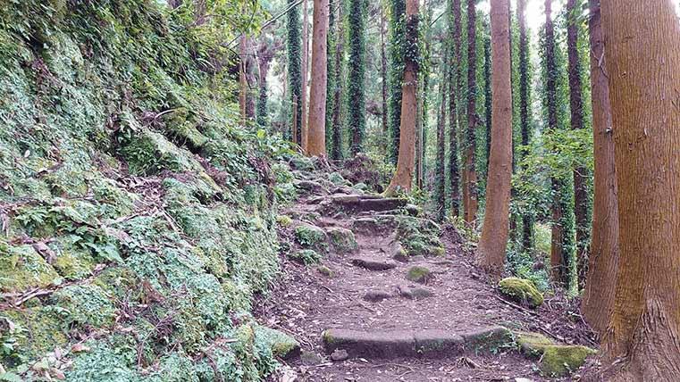 Hiking course in Mt.Nokogiri