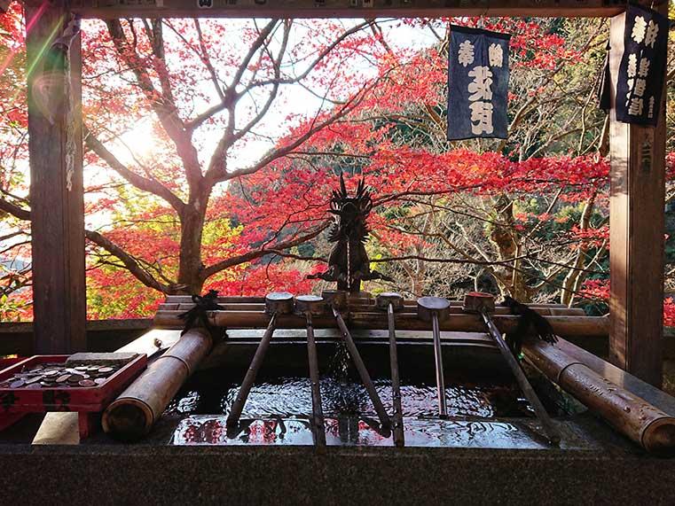 Japanese Chozuya at Oyama Temple (purification fountain)