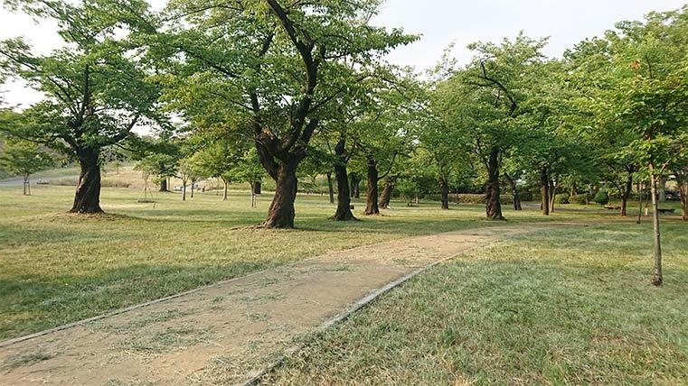 Hazamayama Park in Western Tokyo