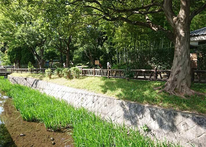 Okamoto park