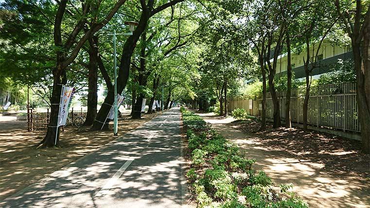 Tama Jitensyado (cycling road)