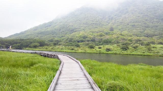 kakumanbuchi-woodern road
