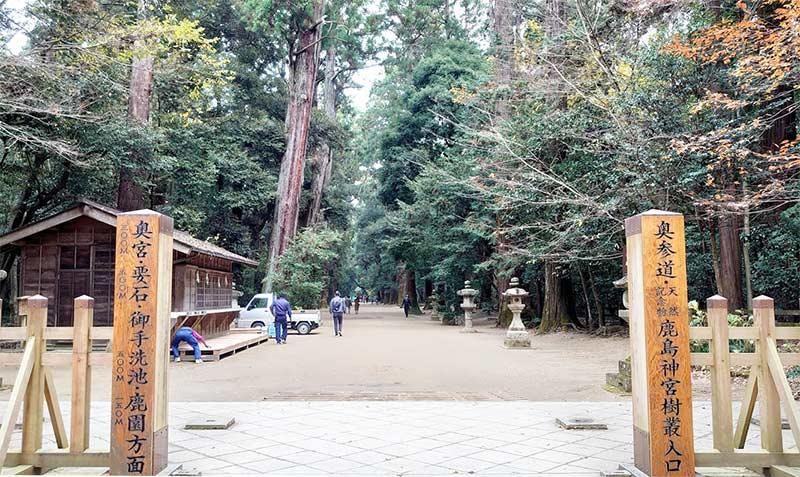 Kashima Jingu Forest